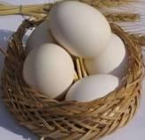 تخم مرغ را قبل از نگهداری در یخچال نشویید