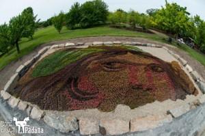 باغ گل در مونترال – 2