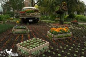باغ گل در مونترال – 3