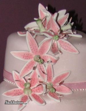 کیک عقد صورتی – 2