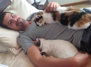 هرگز گربه ها را داخل خانه راه ندهید
