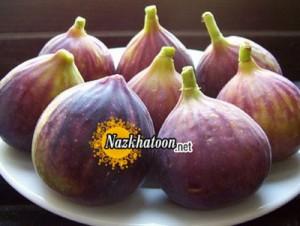 دانستنی های میوههای قرآنی