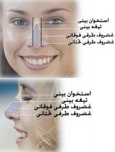 روش کوچک تر کردن بینی با آرایش