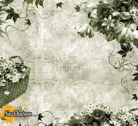 cart aroosi (8)