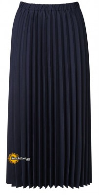 Pleated-skirt-Business-Attire-For-Women-5-630x1236