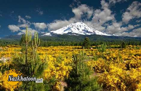 California-nature-photos-38