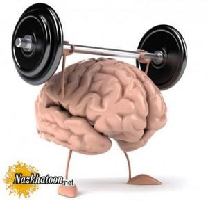 خوراکیهایی مفید برای تقویت مغز