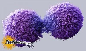علائمی مهم درباره سرطان