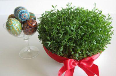 سبز کردن سبزه عید