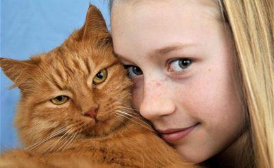 علایم حساسیت به حیوانات