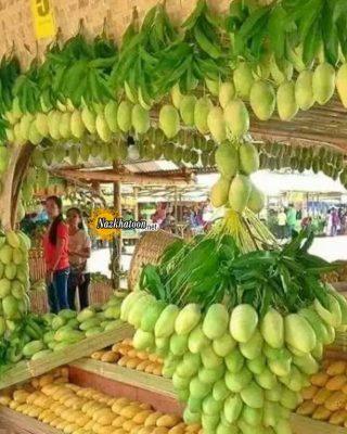 عکس میوه های خوشمزه – ۶