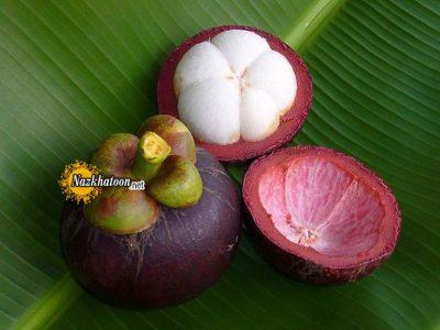 عکس میوه های خوشمزه – ۱۸