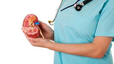 با این مواد غذایی سلامتی کلیه خود را ارتقا دهید