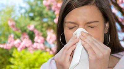 آنتیهیستامین های طبیعی برای مبتلایان به آلرژی