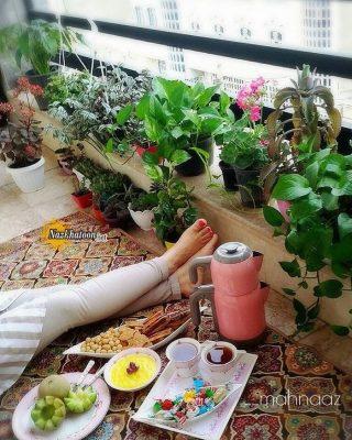 تصاویر گل و گیاه – ۵۳