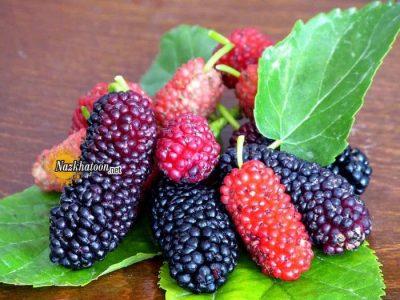 عکس میوه های خوشمزه – ۲۶